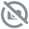 Assiette plate magic circus Ebulobo